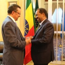 Ethiopian foreign minister and outgoing Somali president Hassan Sheikh Mohamud.